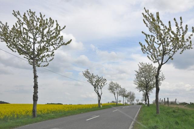 Unterwegs im ländlichen Niedersachsen.