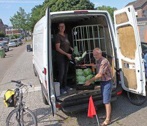 Dienstagnachmittag liefert Claudia von der Hofgemeinschaft Grummersort für das SoLaWi-Depot in Eversten aus. Rainer organisiert für dieses Depot die Annahme. Fot: Elke Syassen