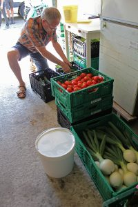 Im Depot sortiert Rainer die Lebensmittel ud schreibt an jede Kiste, wie viel jeder für seinen Anteil bekommt. Foto: Elke Syasse
