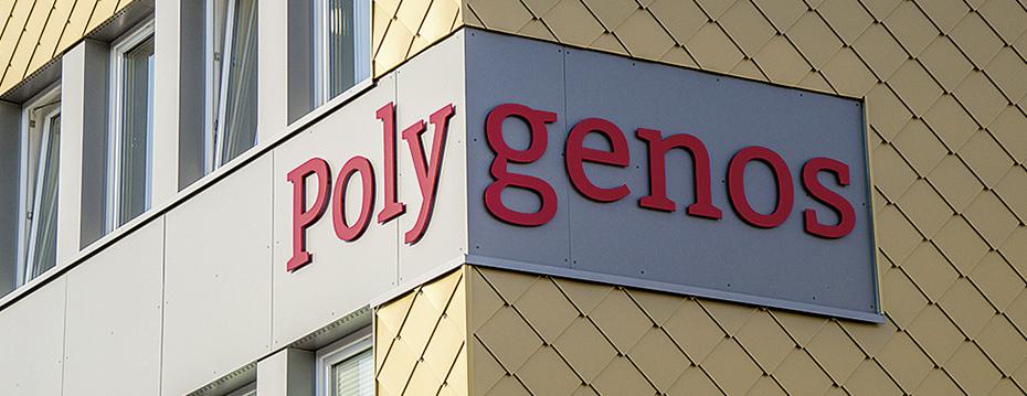 Polygenos