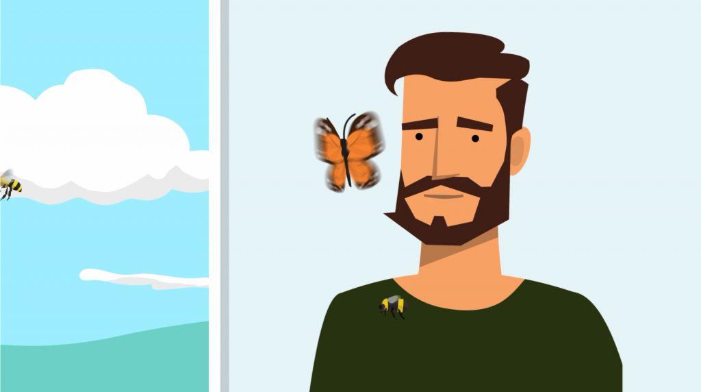 Standbild aus dem Video zum Aktionsprogramm Insektenschutz.