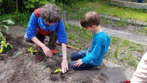 Lernen und pflanzen in Begleitung in der Grundschule Klingenbergstraße.
