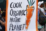Cook Organic Not The Planet.