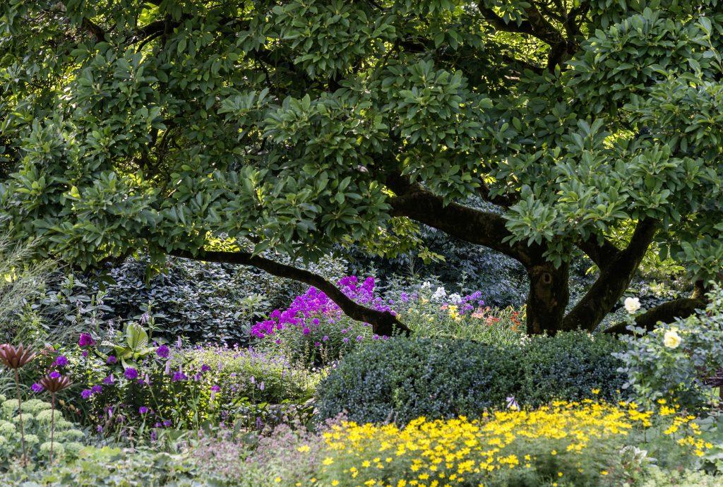 Foto: Bauerngarten Anke zu Jeddeloh.