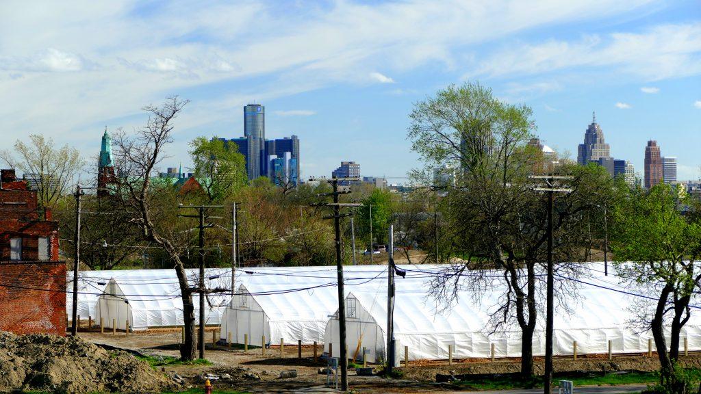 Einige Gewächshäuser von RecoveryPark, dahinter die Skyline von Detroit.