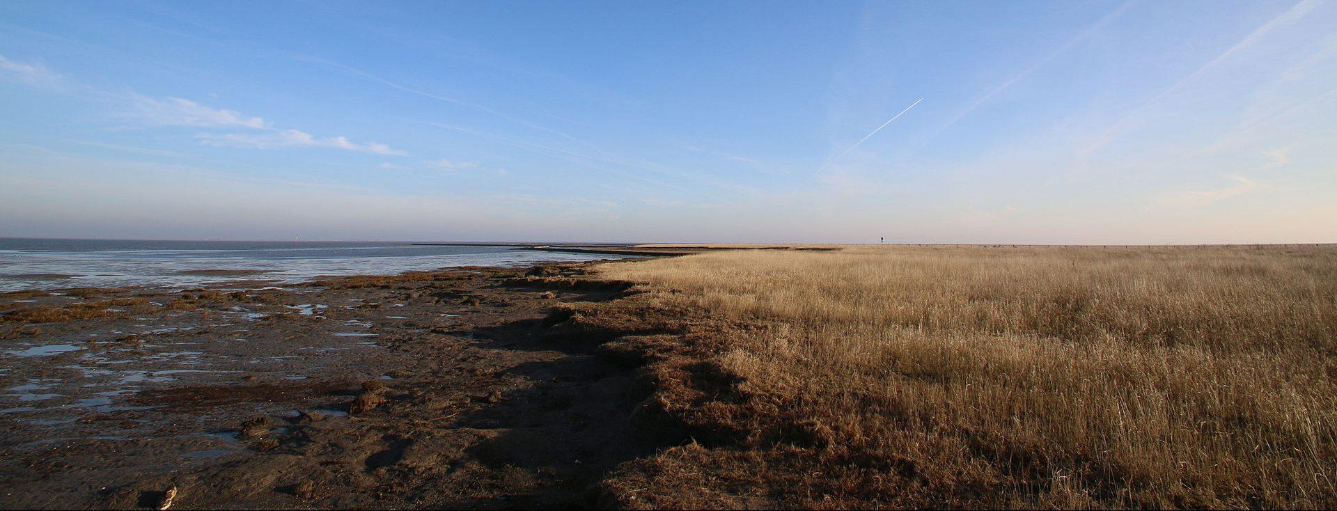 Morgenstimmung im Wattenmeer.
